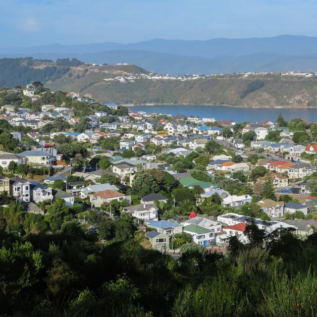 """Wellington suburb"" stock image"