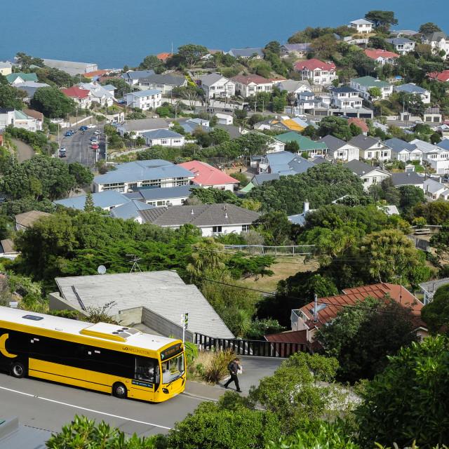 """Hataitai, Wellington, N.Z."" stock image"