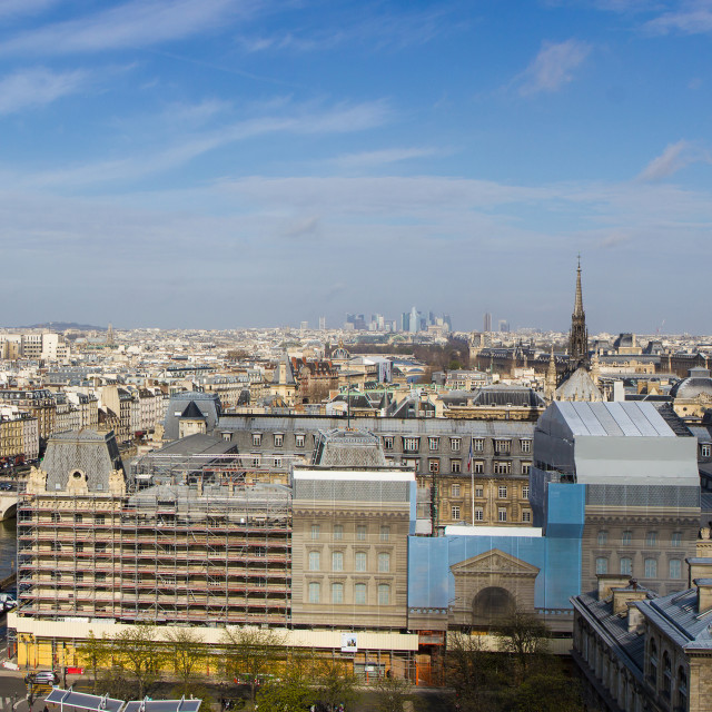 """""""Paris skyline from Notre Dame"""" stock image"""