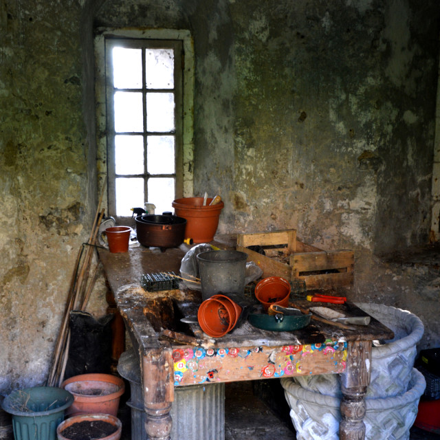 """Old potting shed"" stock image"