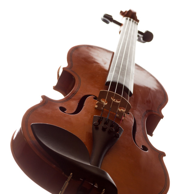 """""""Violin isolated on white"""" stock image"""