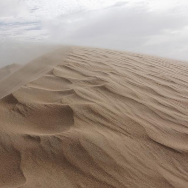 """desert sandstorm"" stock image"