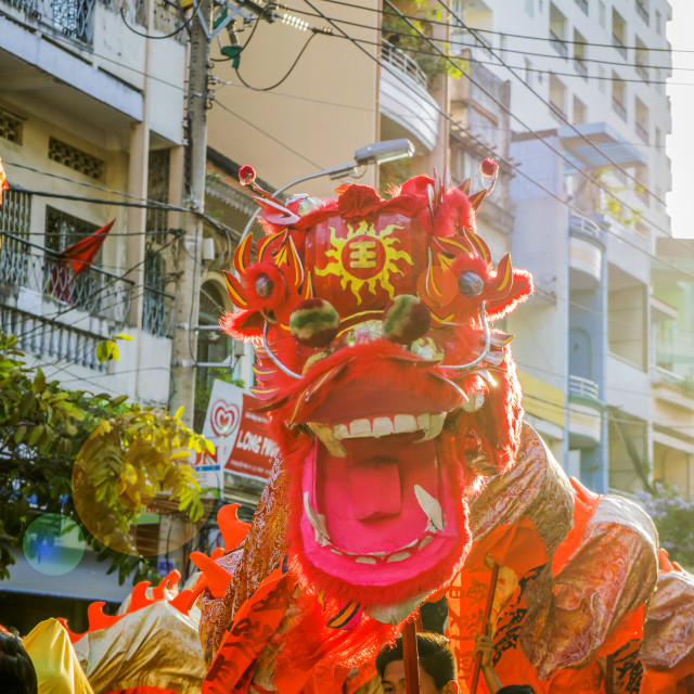 """The lion dances"" stock image"