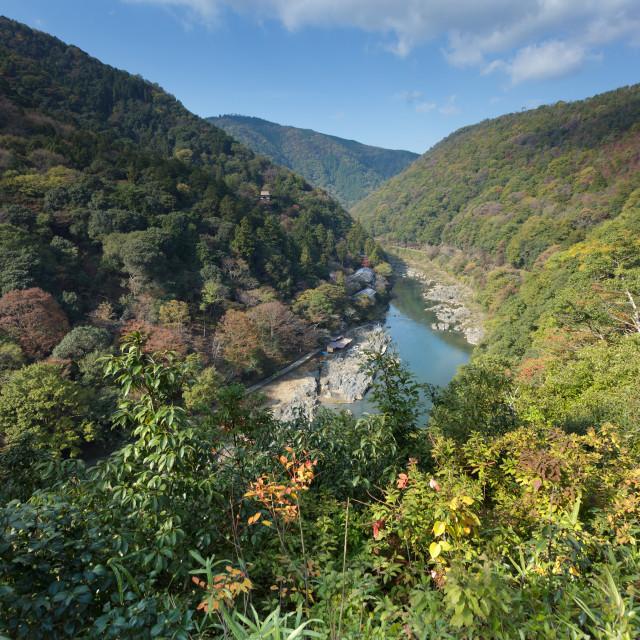 """""""Japanese landscape in Arashiyama"""" stock image"""