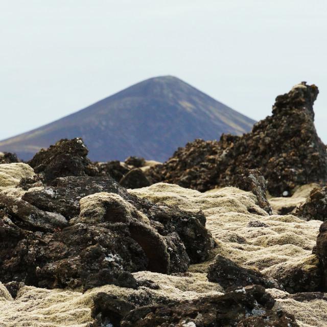 """Volcanic Sphagnum"" stock image"