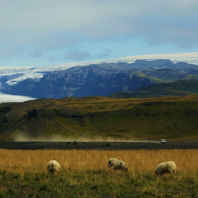 """Icelandic Quarters"" stock image"