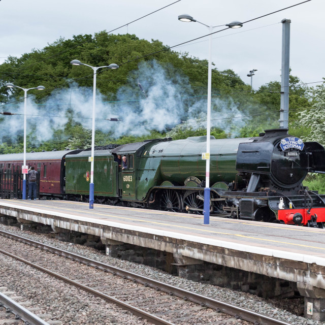 """Flying Scotsman passing through St Neots"" stock image"