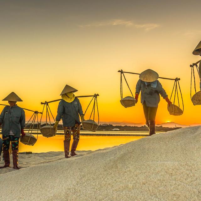 """""""salt burden in the sunset"""" stock image"""