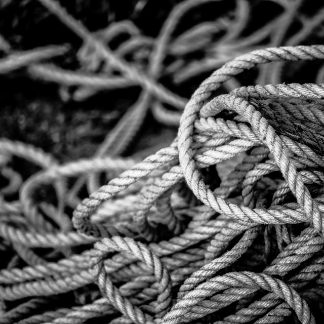 """Tangled Rope"" stock image"