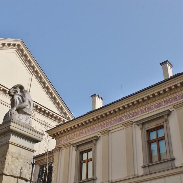 """The Hutten-Czapski Palace Gargoyle, Krakow"" stock image"