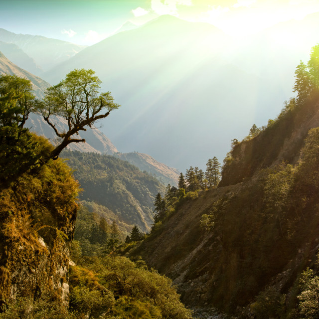 """enchanted Nepal landscape"" stock image"