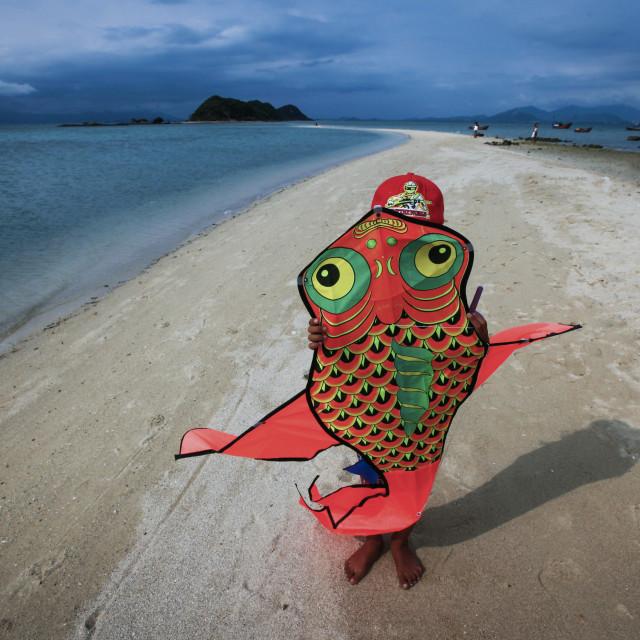 """""""Diep Son Island"""" stock image"""