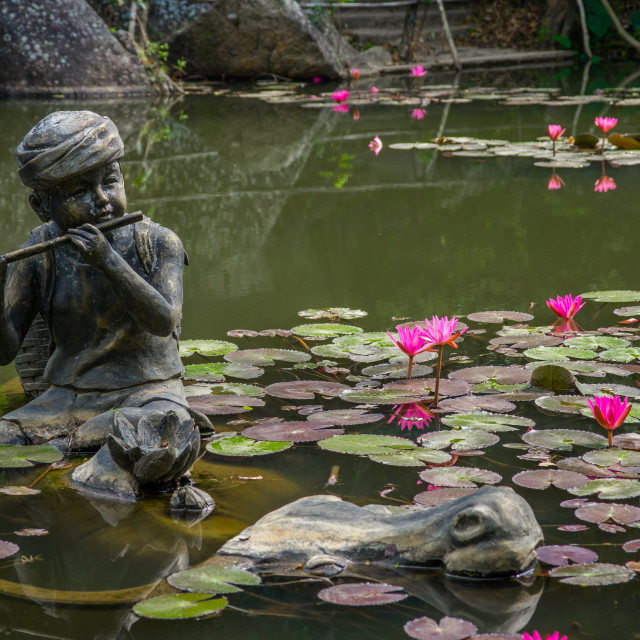 """""""Statue of a boy in a pond with water lilies"""" stock image"""