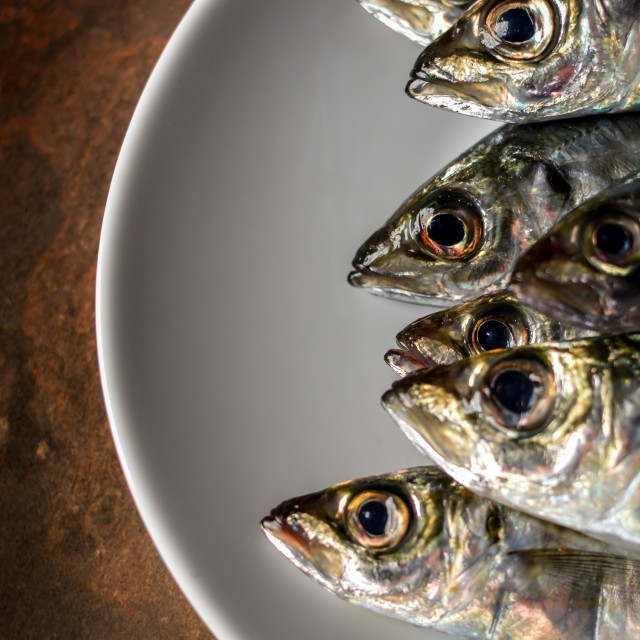 """Fresh mackerel with lemon and fresh herbs"" stock image"