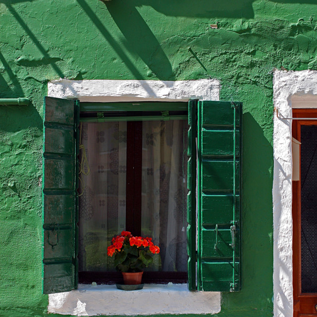 """""""Green wall with window and red flowers in Burano, Venice"""" stock image"""