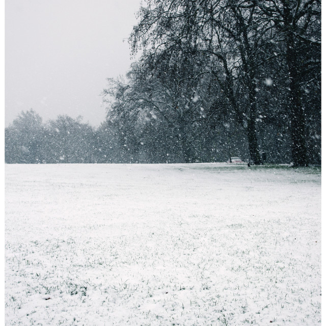 """Snow over Urban Park"" stock image"