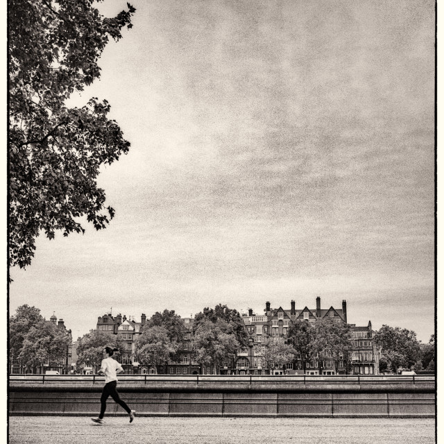 """""""Bronica and Battersea Park"""" stock image"""
