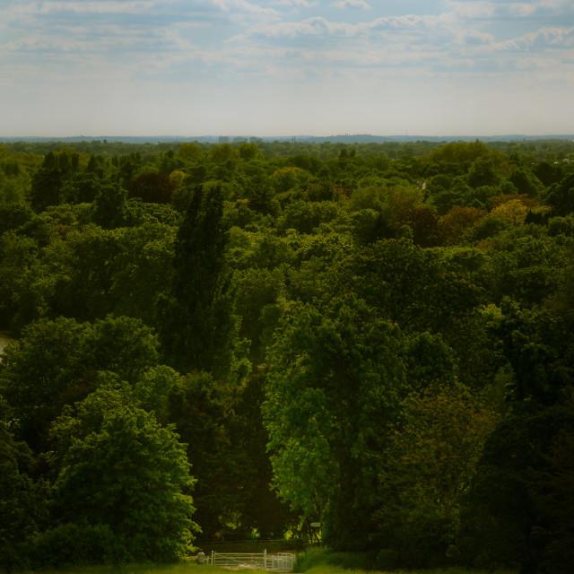 """""""Richmond Views"""" stock image"""