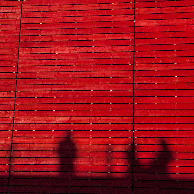 """""""Silhouettes in Red"""" stock image"""