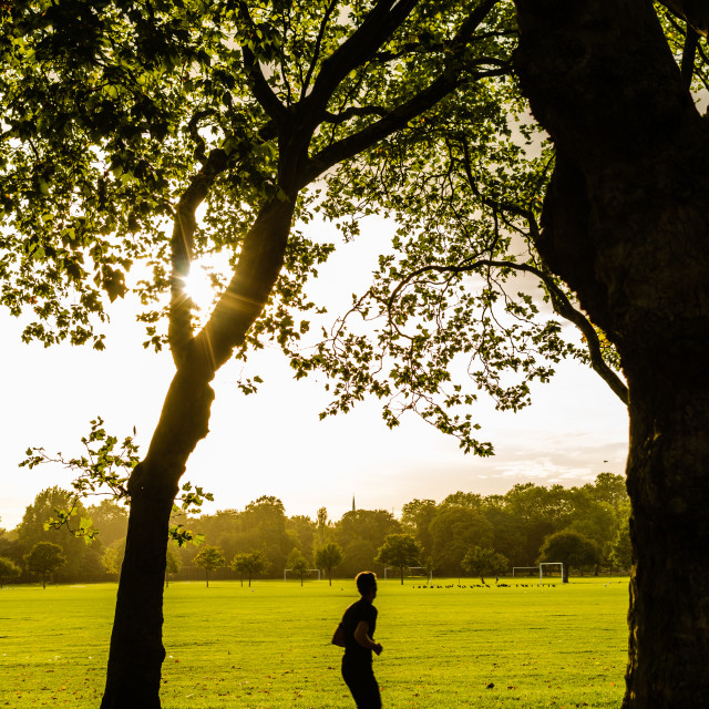 """Jogging in a Park"" stock image"