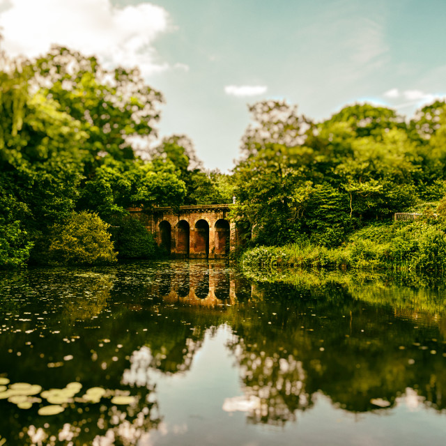"""""""The Viaduct Pond, Hampstead Health with Bokeh"""" stock image"""