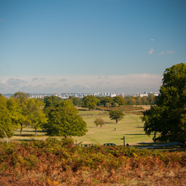 """""""London seen in the Distance from Richmond Park"""" stock image"""