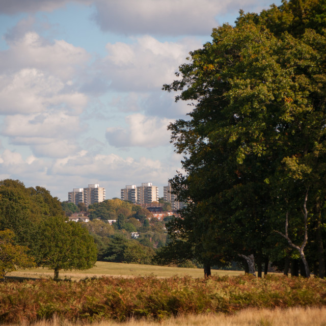 """""""London as seen from Richmond park"""" stock image"""