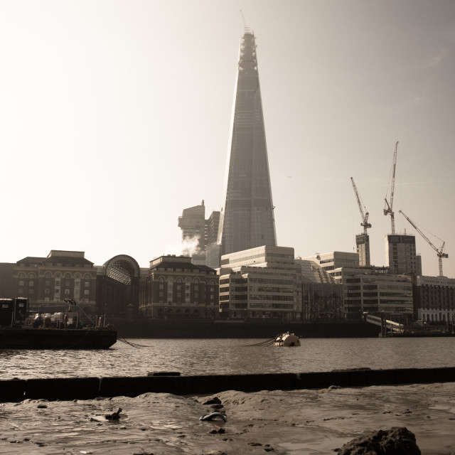 """""""The Shard Across the Water"""" stock image"""