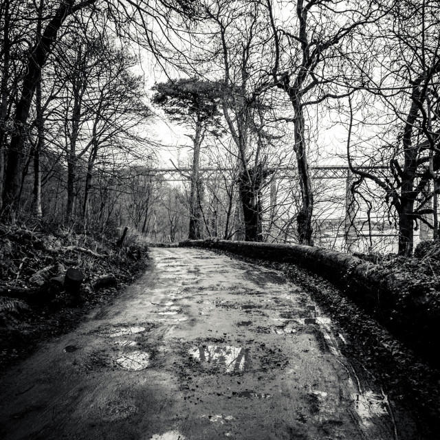 """A Muddy Wet footpath in Edinburgh"" stock image"