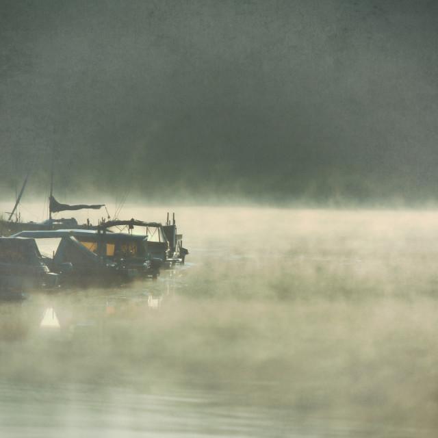 """Fog"" stock image"