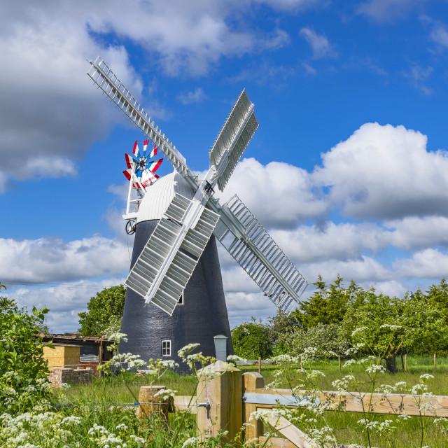 """Thelnetham Tower mill"" stock image"