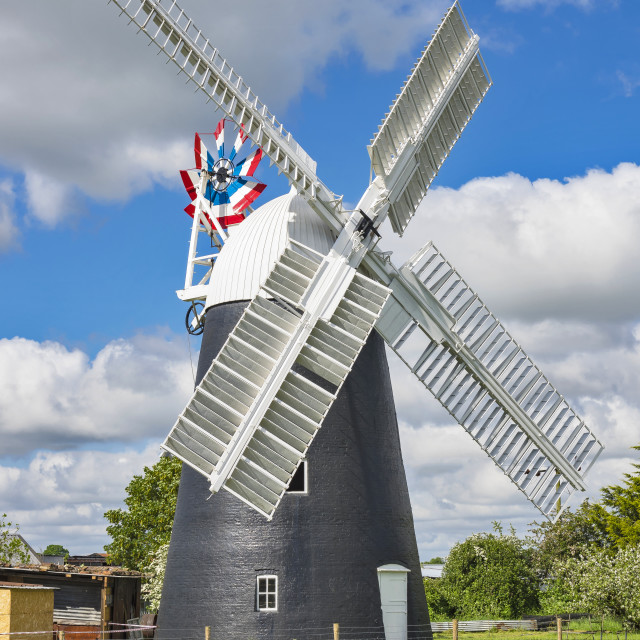 """Thelnetham Tower mill"" stock image"
