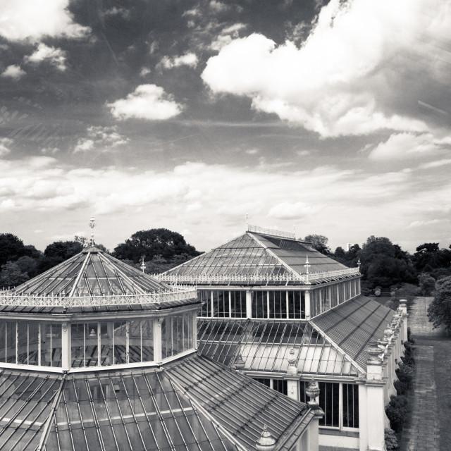 """Kew Gardens Greenhouse"" stock image"