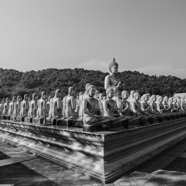"""Buddha statue"" stock image"