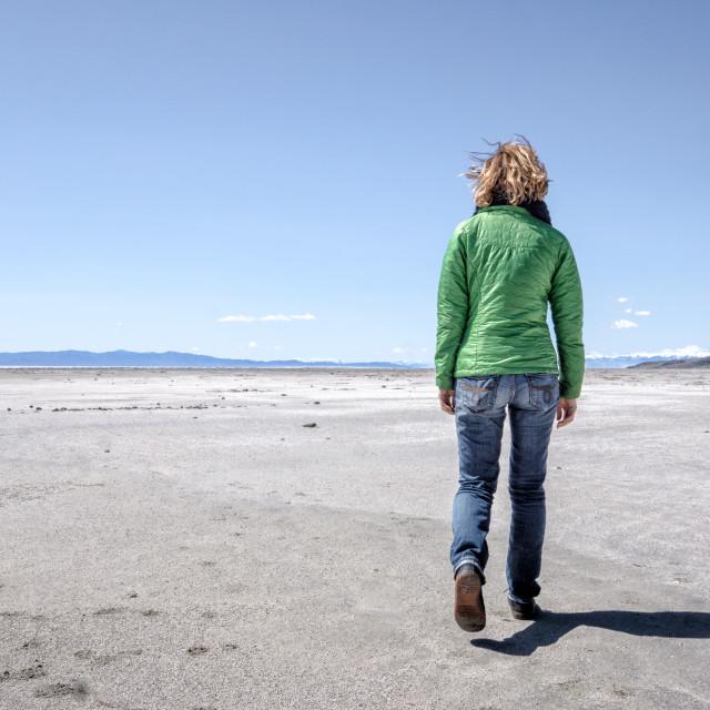 """a woman walks along the shore of the Great Salt Lake, Utah. Near Spiral Jetty"" stock image"
