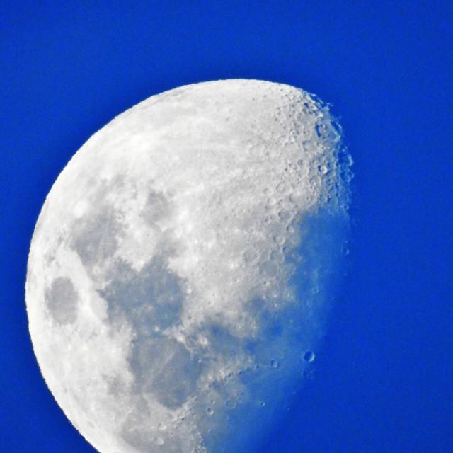 """""""Autumn Moon"""" stock image"""