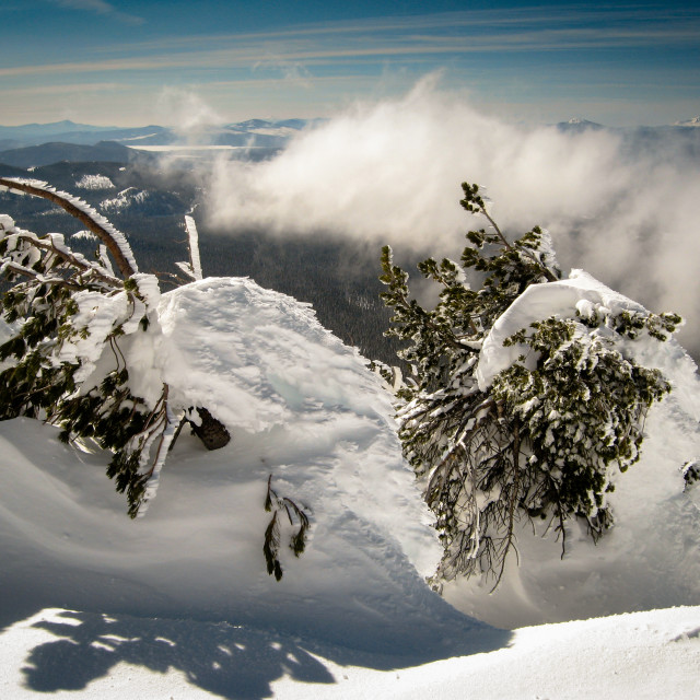 """""""snow buries a few trees on top of Mt. Bachelor with the cascades in the background."""" stock image"""