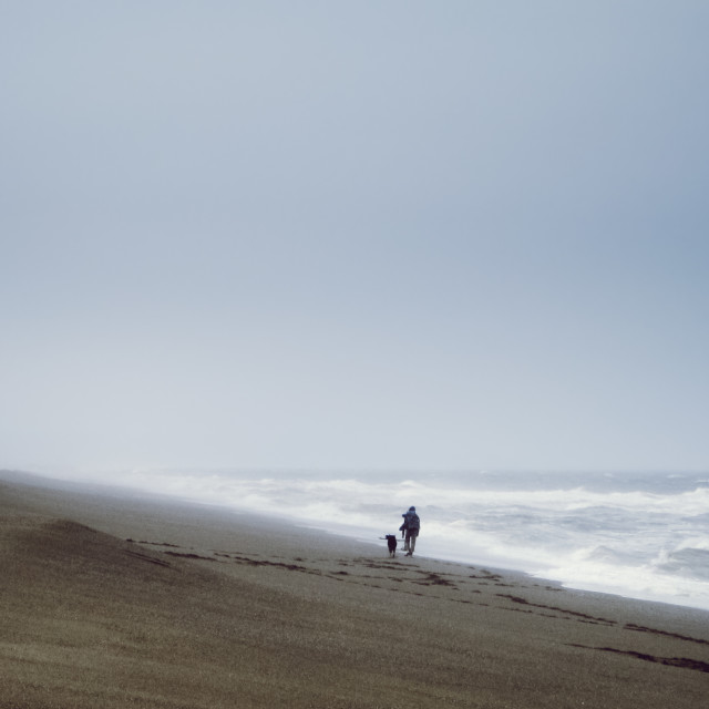 """""""A woman and a dog walk along the beach while waves pound the shore"""" stock image"""