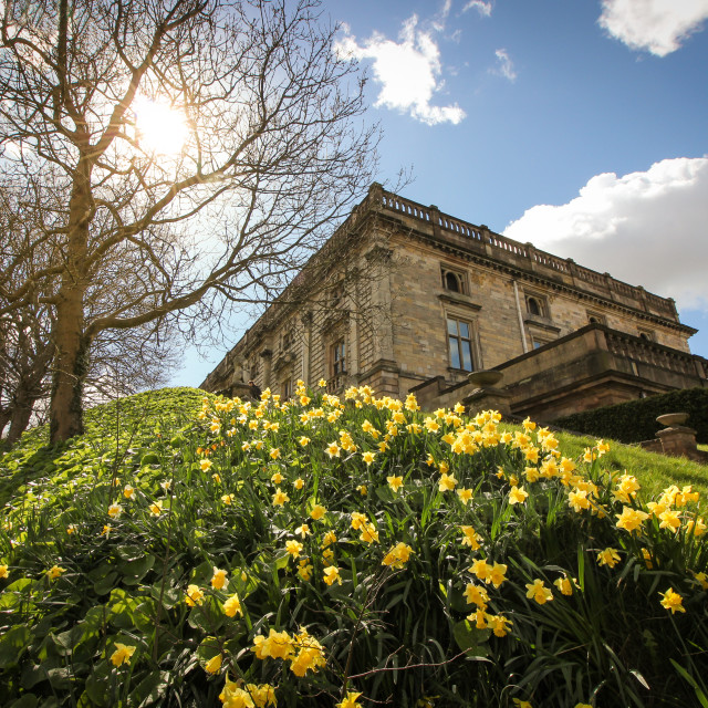 """Nottingham Castle in the Sun"" stock image"