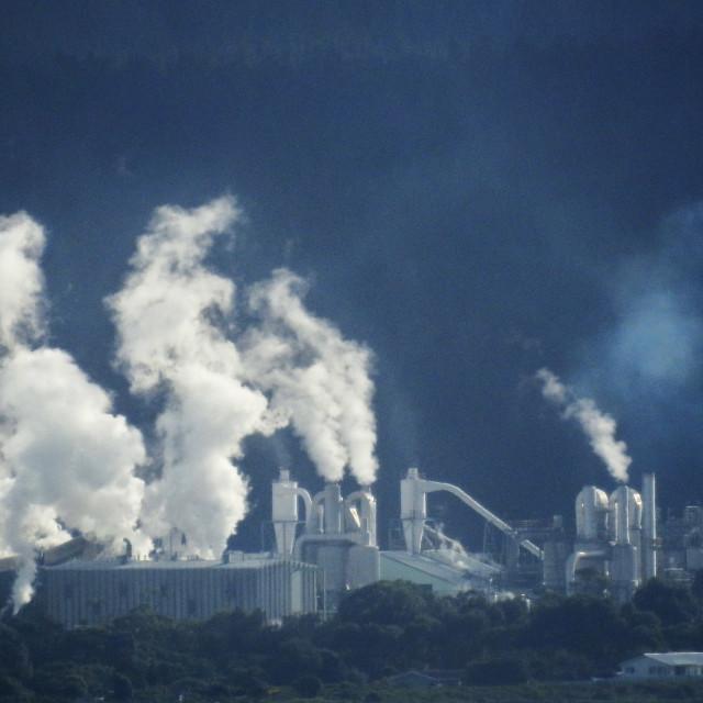 """Whirinaki Pulp and Paper Factory"" stock image"