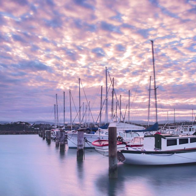 """Pink Cloud Sunrise at Evans Bay Marina, Wellington, New Zealand"" stock image"