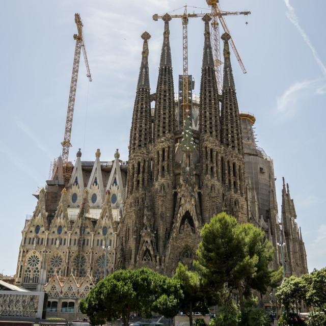 """""""La Familia Sagrada"""" stock image"""