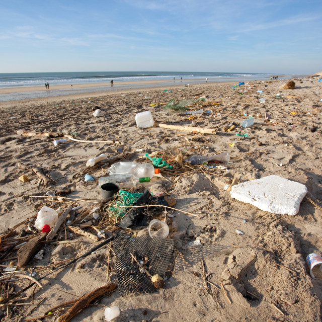 """polluted beach"" stock image"
