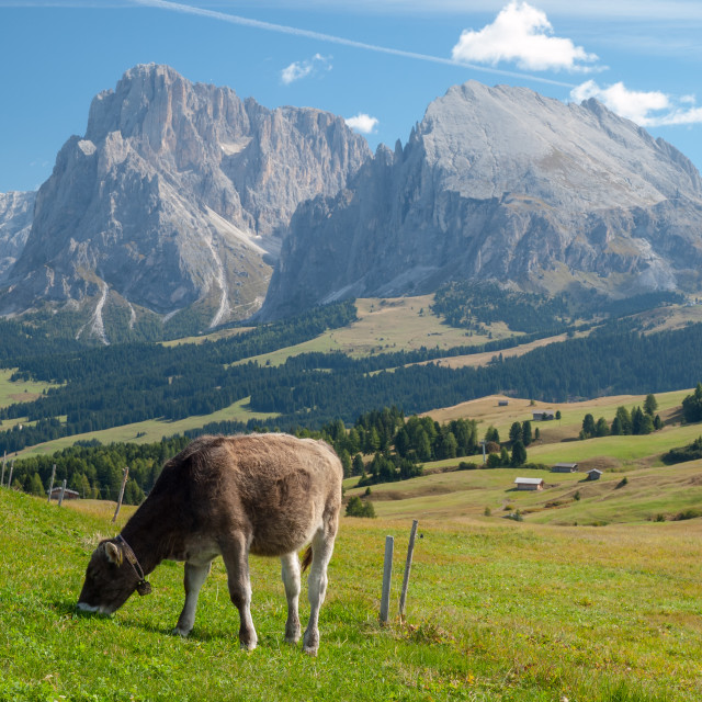 """Picture Postcard from Seiser Alm"" stock image"