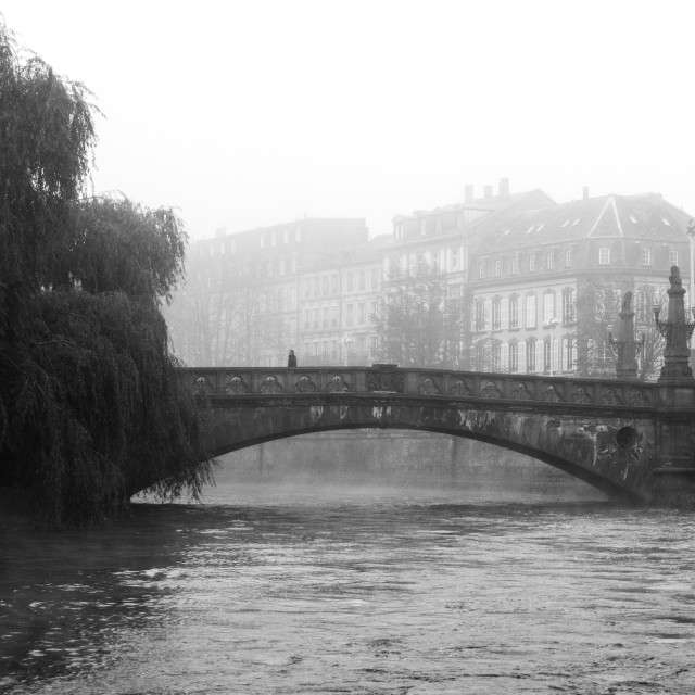 """River Bridge Fog"" stock image"