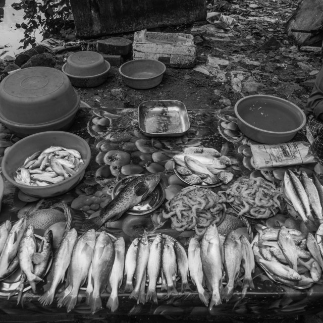 """Fish Stall"" stock image"
