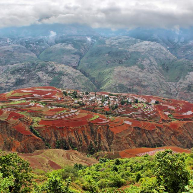 """Red Soil"" stock image"