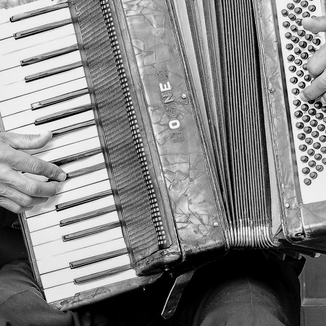 """The Accordion"" stock image"