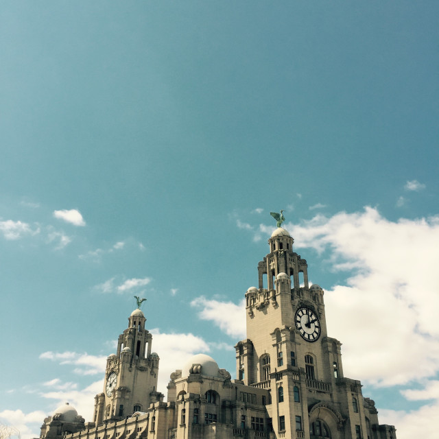 """""""Liver Building"""" stock image"""