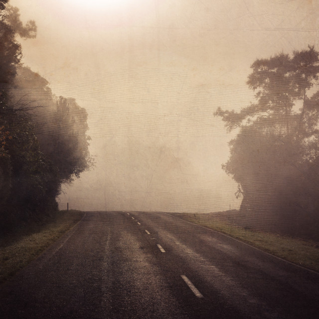 """""""The road less traveled"""" stock image"""